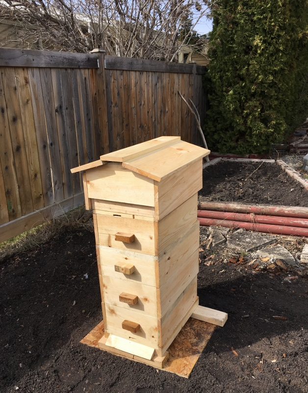 Warre-Langstroth hybrid beehive Edmonton urban beekeeping